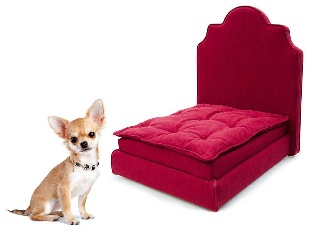letto-con-cane